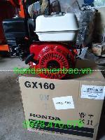 Động cơ xăng honda gx160